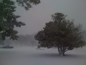 Snow on Christmas Eve in Wichita Falls, TX